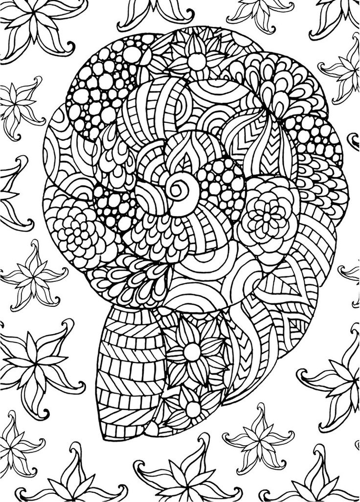 Sea Life Coloring Pages 332 best Coloring Seashells Sea life images on