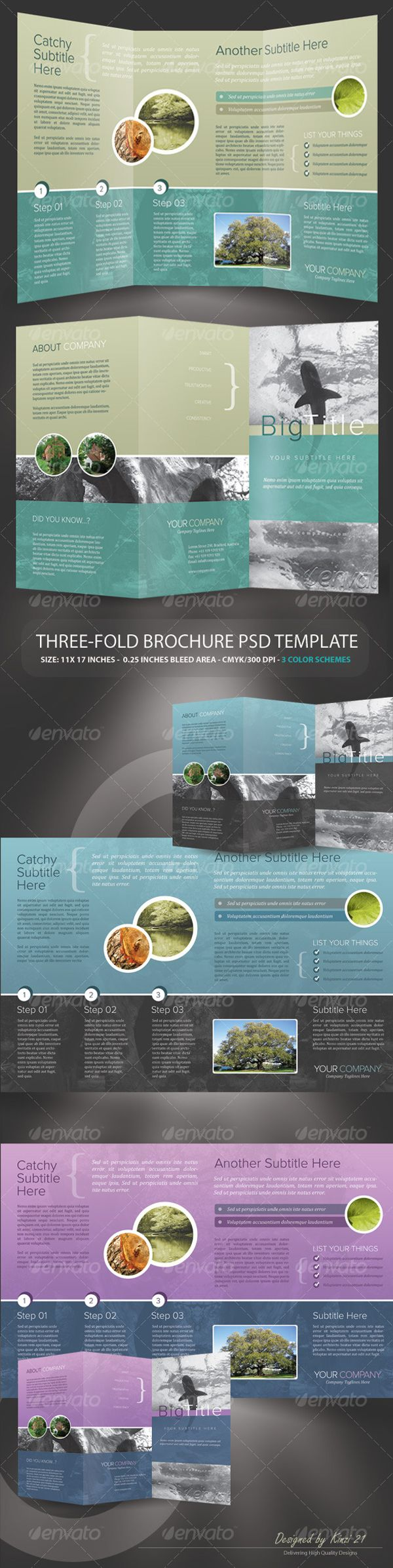 Tri-fold Brochure PSD Template by kinzi21