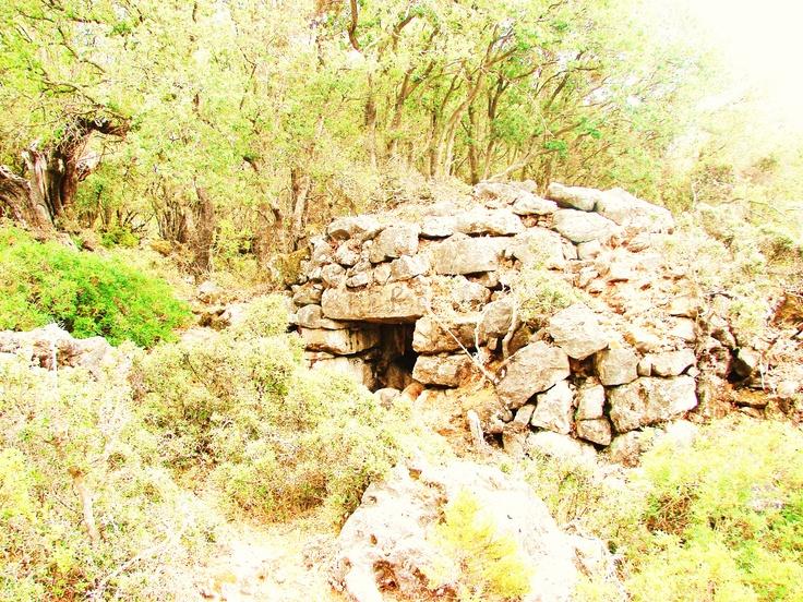 shelter of herdsmen
