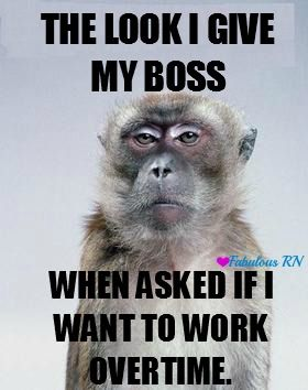The look I give my boss when asked if I want to work overtime. Nurse humor. Nursing humor. Meme. Monkey meme. Work problems. Working problems. Overtime sucks. Over it.                                                                                                                                                     More