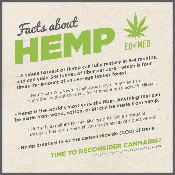 the uses and benefits of industrial hemp Tips for growing industrial hemp  the list of benefits associated with hemp production is extensive  common uses for industrial hemp.