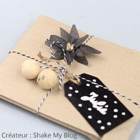 paquet cadeau shake my blog