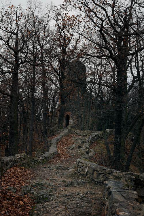 Ancient Castle,  Walbrzych, Poland