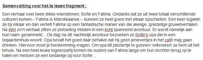 Korte samenvatting boek Sofie en Fatima.