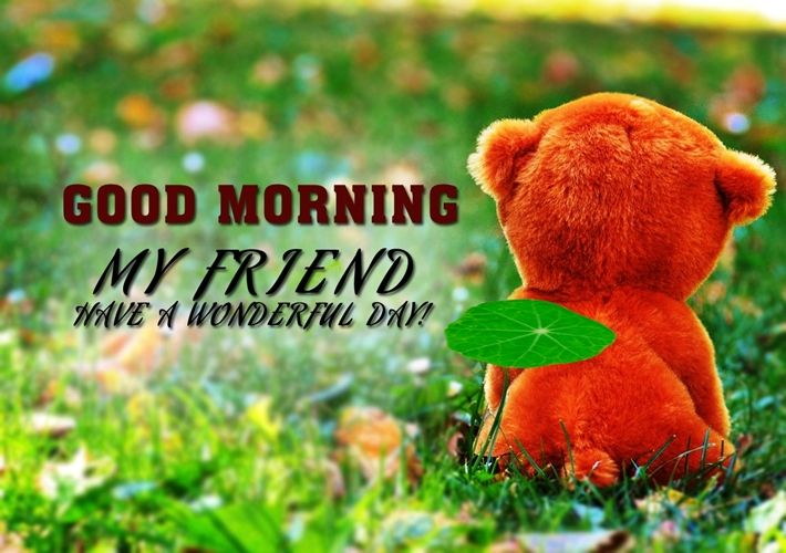 Best Good Morning Wishes for Friend | Good morning friends