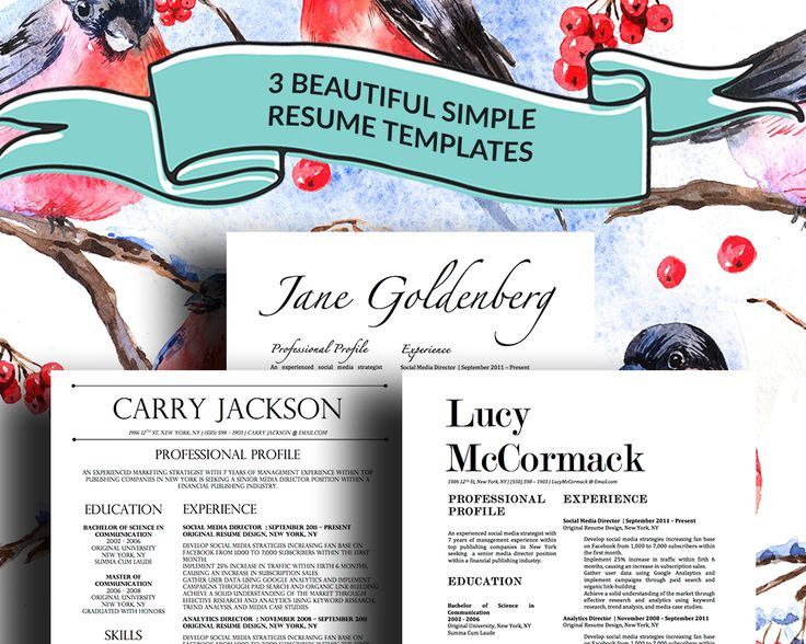 3 stylish resume templates for microsoft word for the
