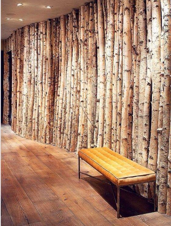 Birch tree hallway