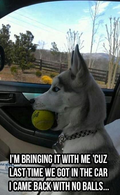 I'm bringing it with me 'cuz last time we got in the car I came back with no balls . . .