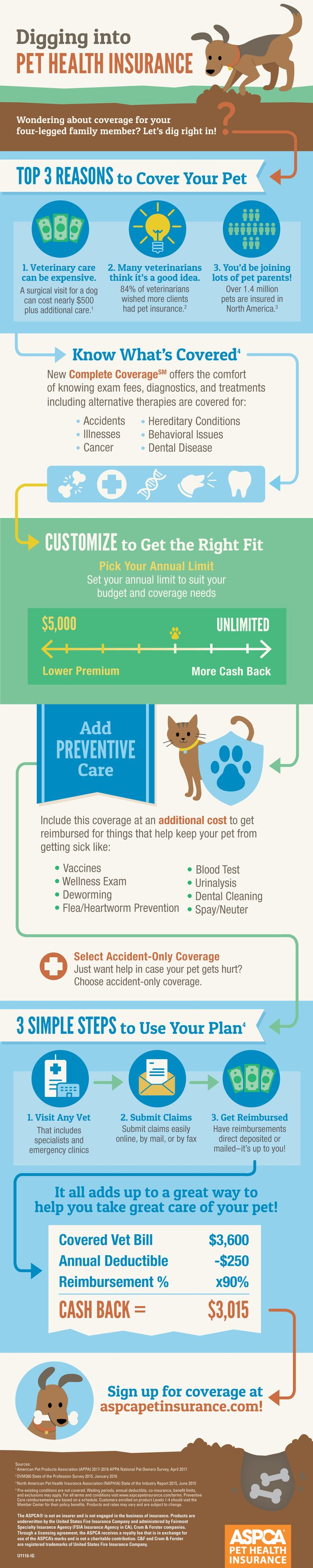 Are you wondering about pet insurance? Let's dig right in to see how it can help make a difference for you and your four-legged family member.