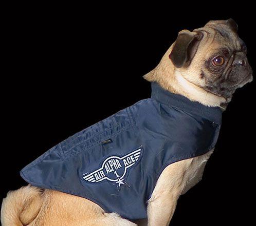 Куртка для собаки Dog MA-1 Nylon Flight Jacket (синя)  Розміри: під замовлення  Ціна: 50 $