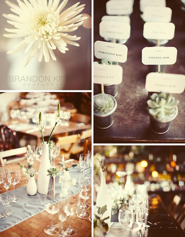 @AvaPhillips succulent-wedding-ideas: White Flowers, Wedding Favors, Escort Cards, Wedding Ideas, Succulents Favors, Succulents Wedding, Parties Favors, Places Cards, Names Cards