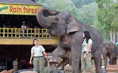 HTM Taman Safari
