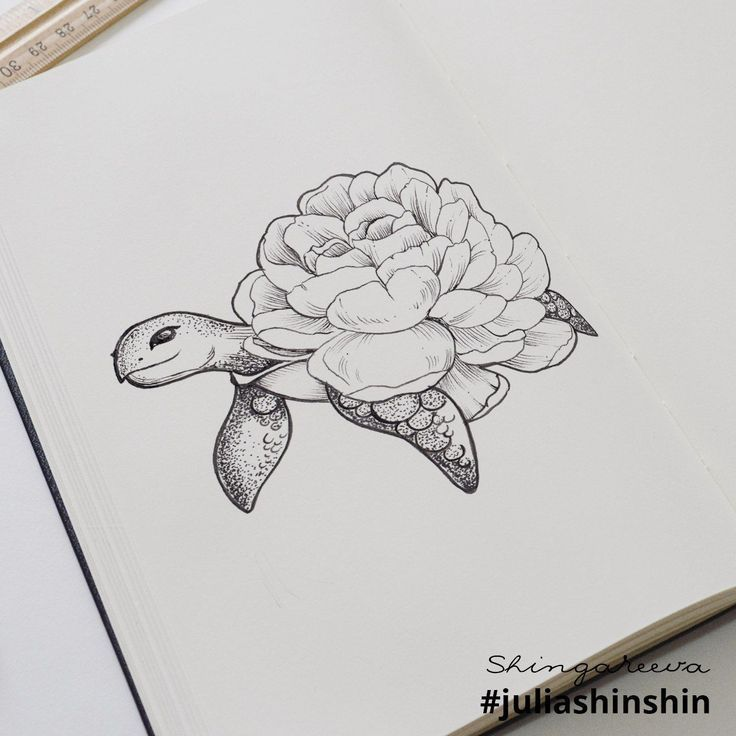 I Create Intricate Drawings Of Animals Embedded With Their Natural Habitats #tattootatuagem