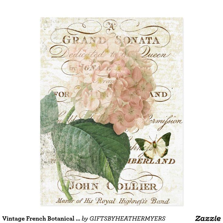 Vintage französische botanische Hydrangeapostkarte