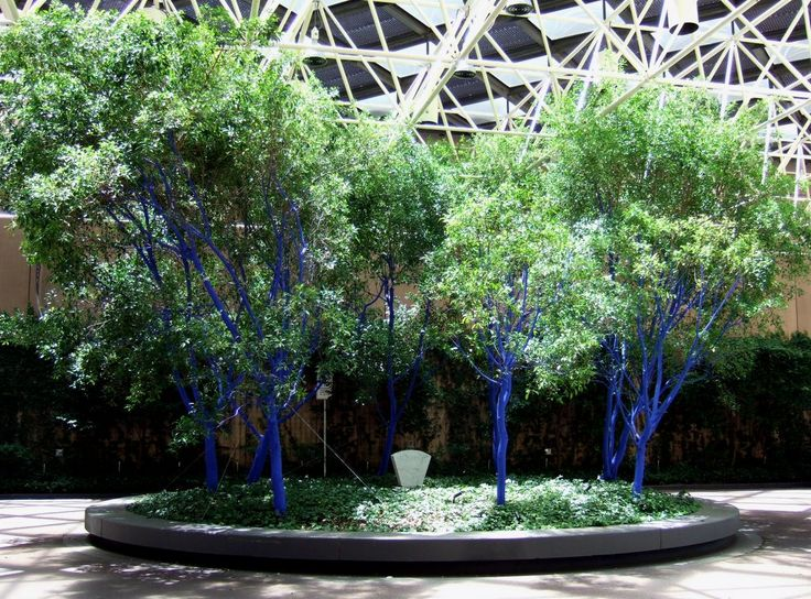 Konstantin Dimopoulos, installation of blue trees at the Sofitel Hotel in Collins Street, Melbourne, 2005.