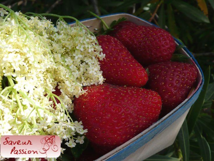 Panna cotta à la fleur de sureau, tartare de fraise au citron vert
