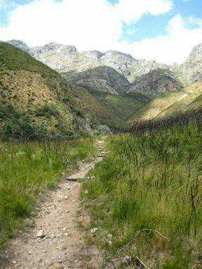 Things to do in South Africa.....The 17 km Panorama Trail in Jonkershoek Nature Reserve is graded moderate to strenuous but the effort is worthwhile for the views alone. Stunning panoramas over the entire Jonkershoek valley and rich mountain fynbos make this a very popular trail.....#hiking #southafrica #photosafari #tourism #extremefrontiers #winelands #adventure #travel #holiday #vacation #safari #tourist #hikigtrails