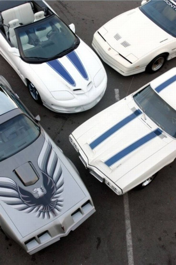 Pontiac trans am gathering white with blue stripes year of
