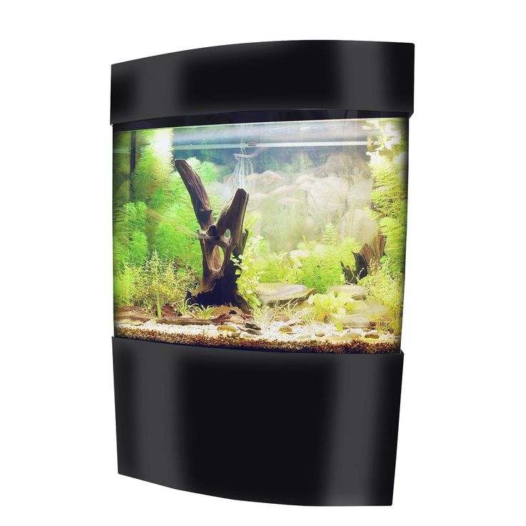 Vepotek Glossy Rectangular Bow Fish Tank Kit with Stand and Canopy