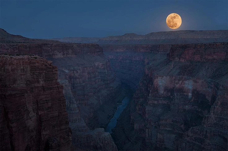 Wessik Moon