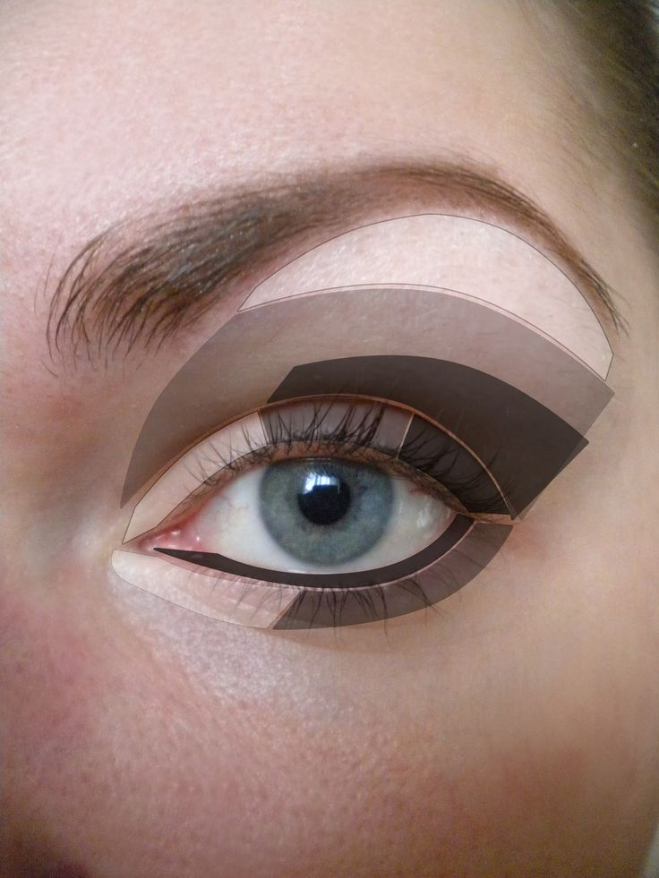Eye shadow application map,