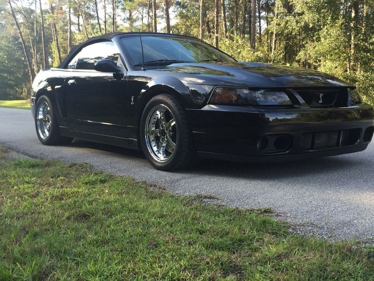 2003 Ford Mustang Cobra Convertible 10th anniversary