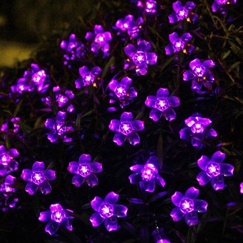 Innoo Tech 50 Led Solar String Lights Outdoor Fairy Purple Blossom Decorative Gardens Indoor Christmas Party Wedding Patio