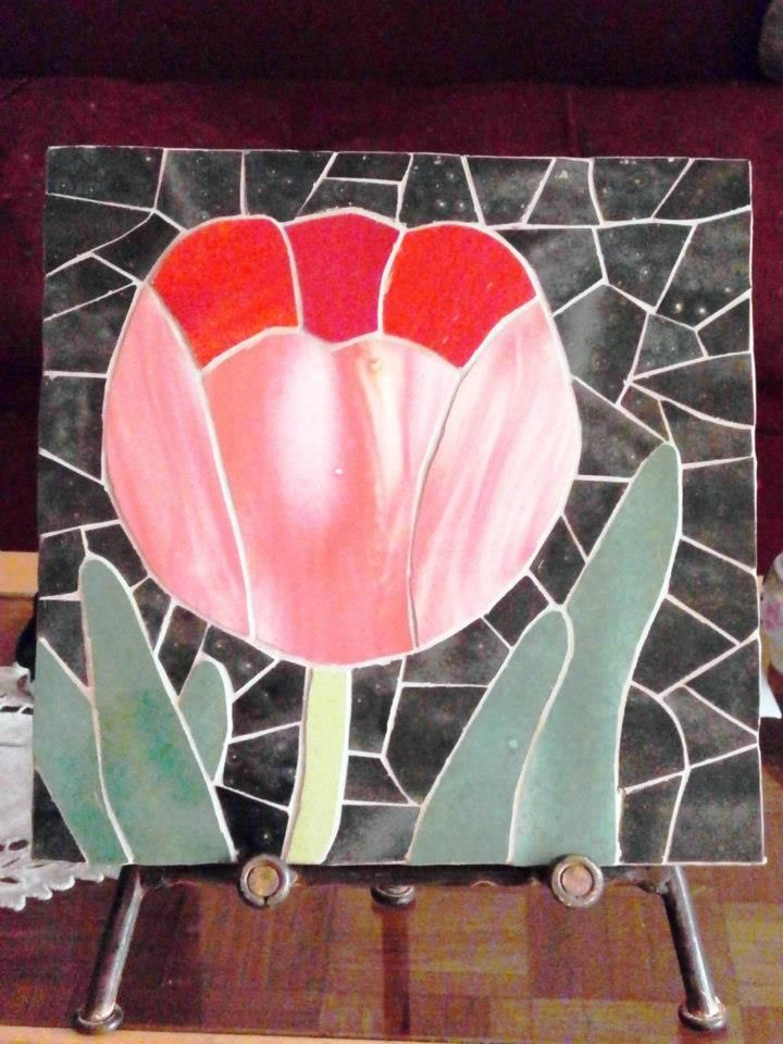 Tulipán gordo