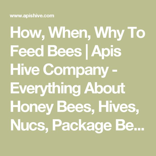 How, When, Why To Feed Bees | Apis Hive Company - Everything About Honey Bees, Hives, Nucs, Package Bees For Sale, Pollination Services, Research, Honey Bees For Sale, How To Be In The Bee Business In The Rocky Mts.