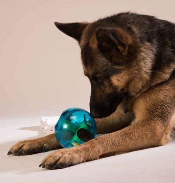 Treat Dispensing Giggle Ball Dog Toys Your Dog Dogs