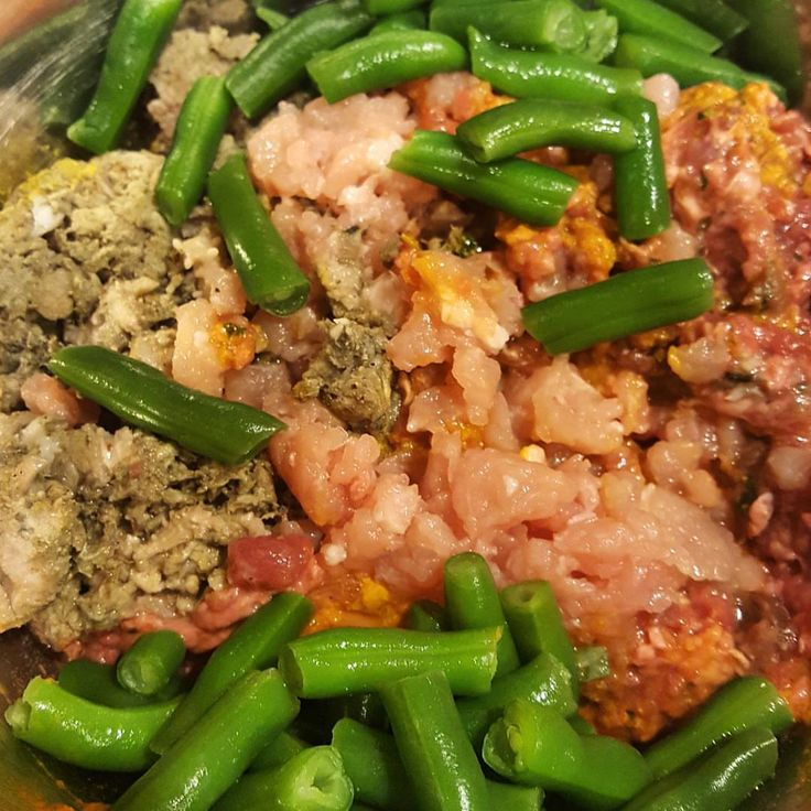 Breakfast for the dogs: Ground turkey Ground venison w/ duck necks and veggie mix Green tripe Green beans Sydney is on a diet. #lifewithdogs #keepthetailwagging #rawfeddogs #barfmodelrawfeeding...