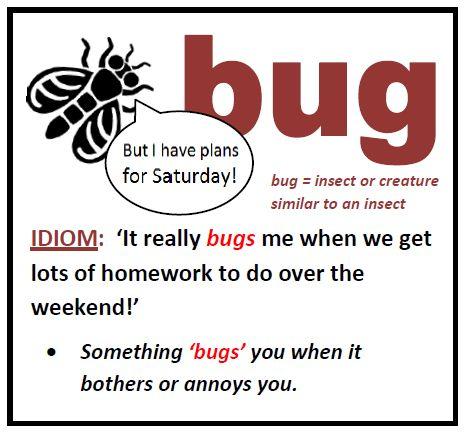 Bug, bugs, #idioms, #learn, #english, #идиомы, английские