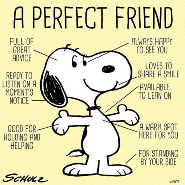Friendship Greatness: 150 Best Images About Friendship On Pinterest