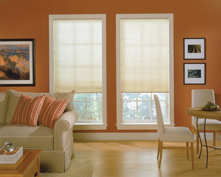 Living Room Shades Remodelling 27 Best Pleated Shades Cordless Images On Pinterest  Blinds .
