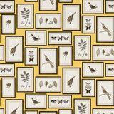 Sanderson Wallpaper: Picture Gallery in Yellow