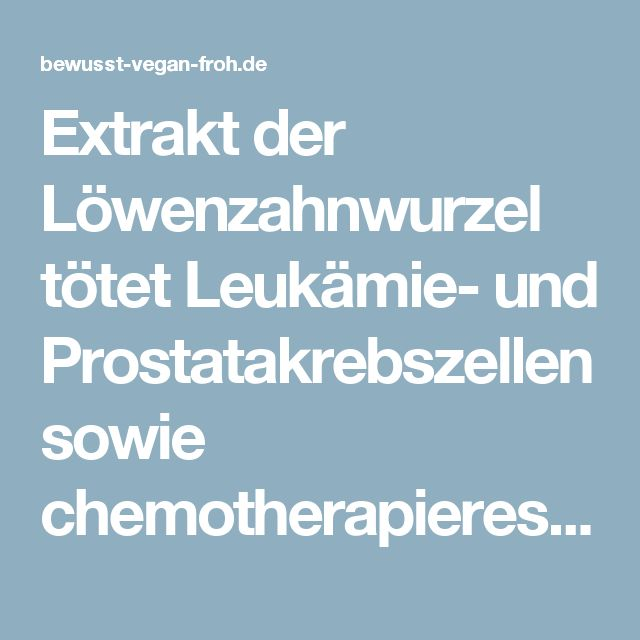 Extrakt der Löwenzahnwurzel tötet Leukämie- und Prostatakrebszellen sowie chemotherapieresistente Melanome - ☼ ✿ ☺ Informationen und Inspirationen für ein Bewusstes, Veganes und (F)rohes Leben ☺ ✿ ☼