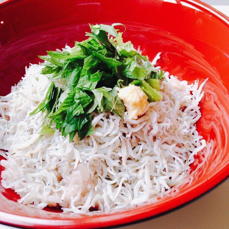しらす丼 Bowl of rice with boiled whitebait
