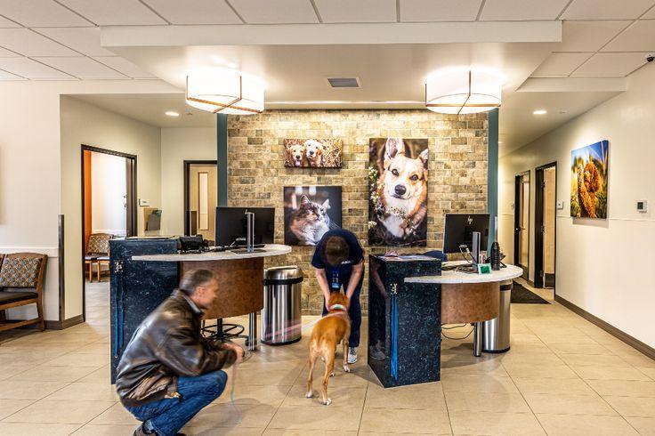 VCA Eagle Park Animal Hospital — Commercial & Veterinary