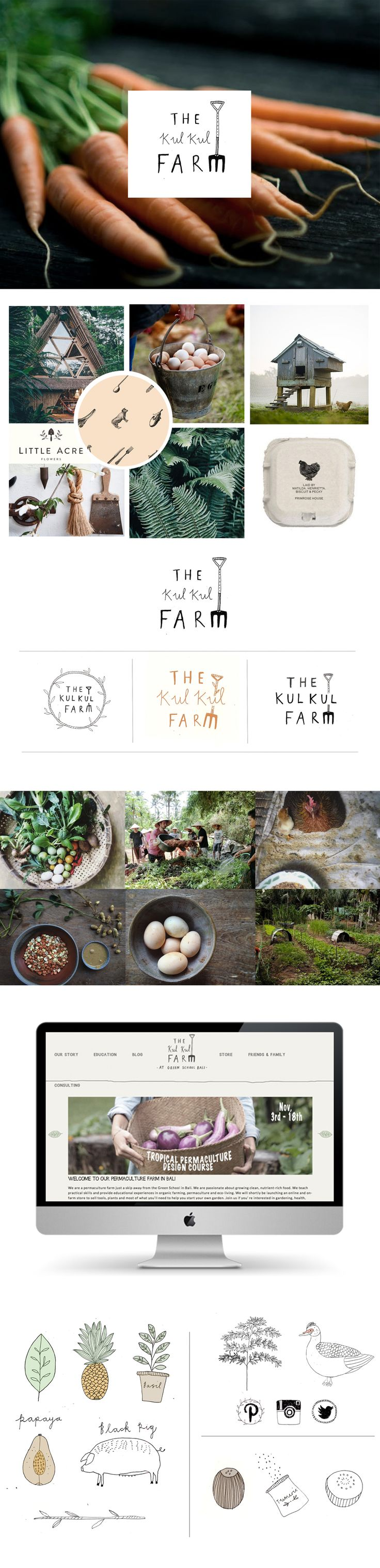 Branding and website by Ryn Frank www.rynfrankdesign.co.uk