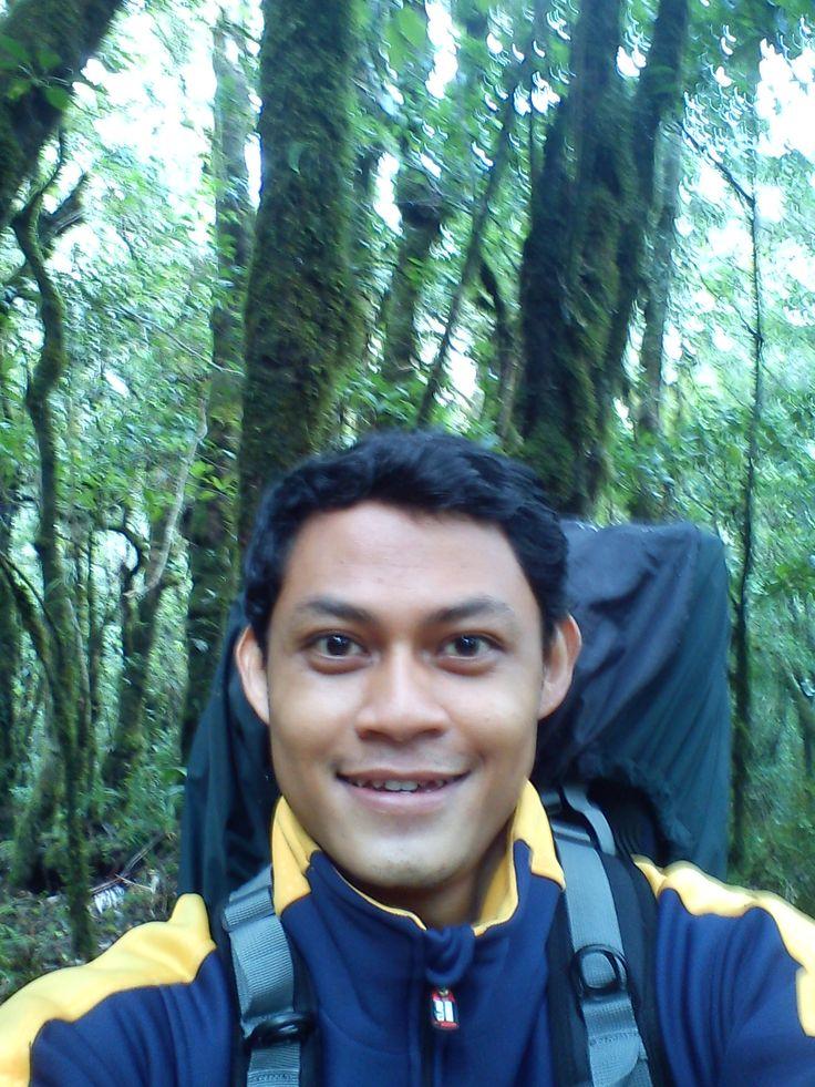 Hutan Tropis, gunung Gede