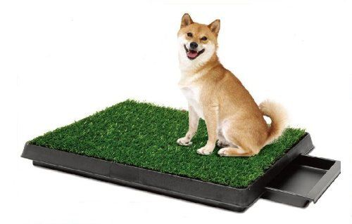 Pee Wee Dog Park Indoor Dog Toilet   The Puppy   Dog food, costumes and equipment