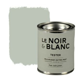 Le Noir & Blanc muurverf extra mat pale jade green 100 ml Idee voor in de woonkamer op een muur