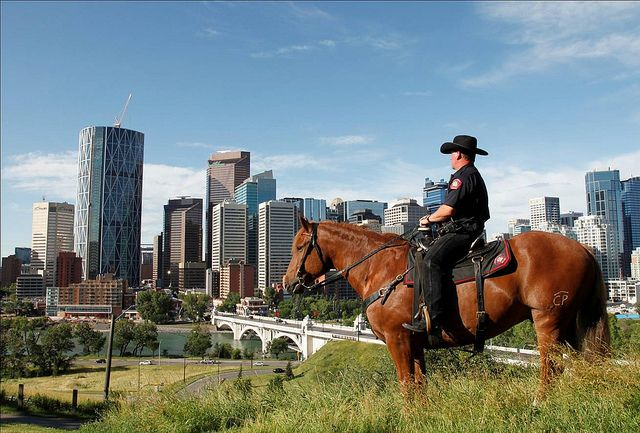 I want this for my future! Calgary Police Service Mounted Unit
