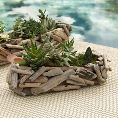Driftwood decorated containers