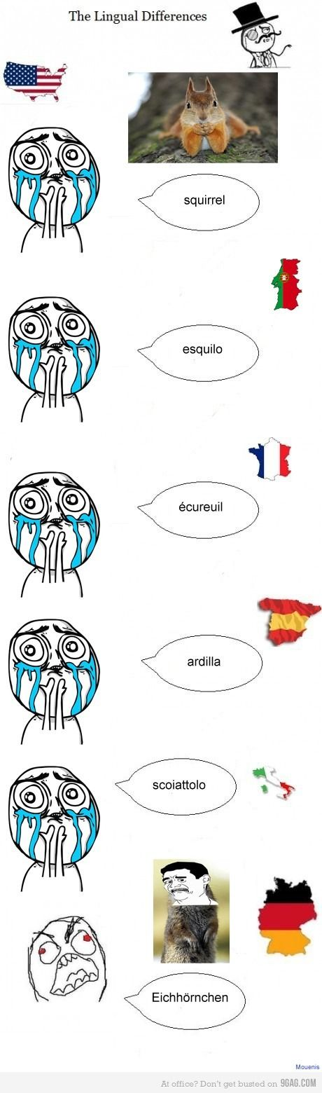 The lingual differences