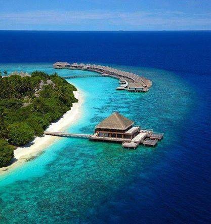 The Maldives  #diving #sub #subacquea #Maldive