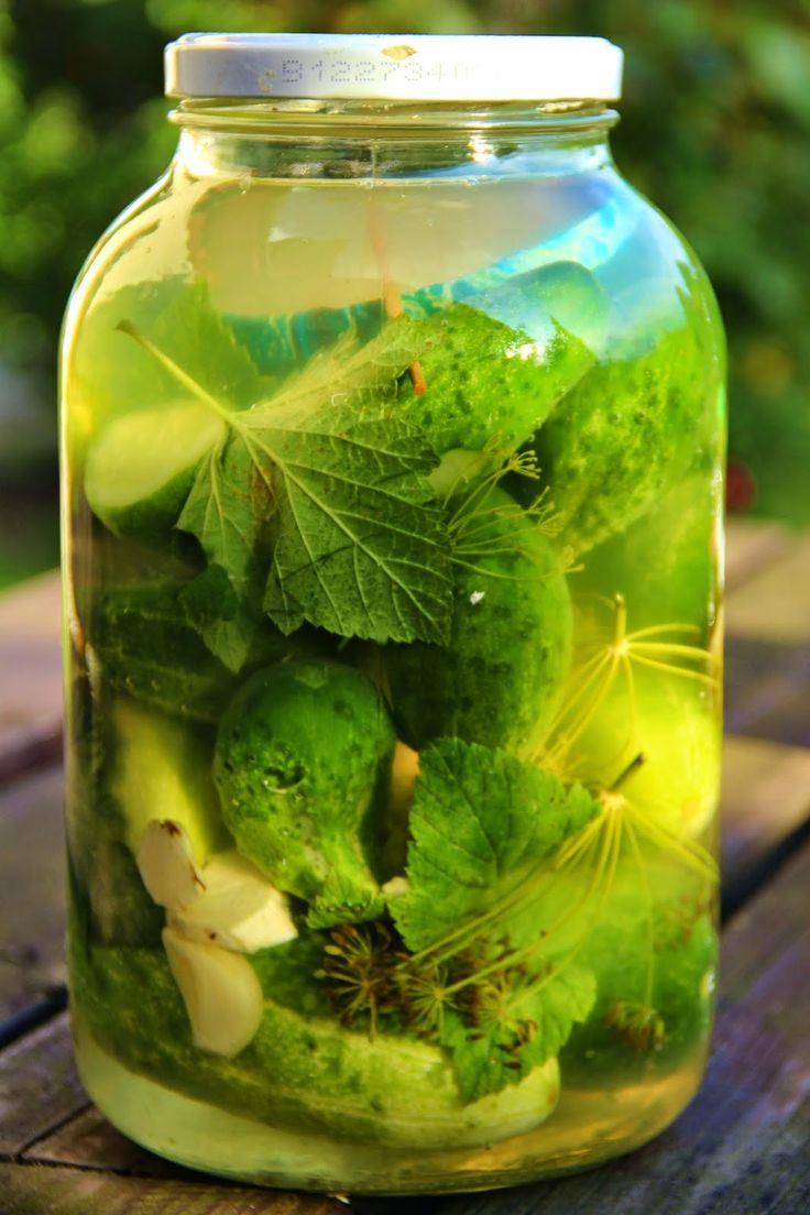 Na přípravu budete potřebovat:   přerostlé okurky nakládačky, množství takové, aby se vám vešly do 3litrové sklenice  3l vody a 5vrchovat...