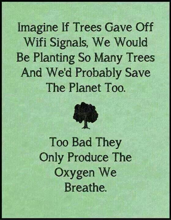 Oxygen, Trees, and Wi-Fi?