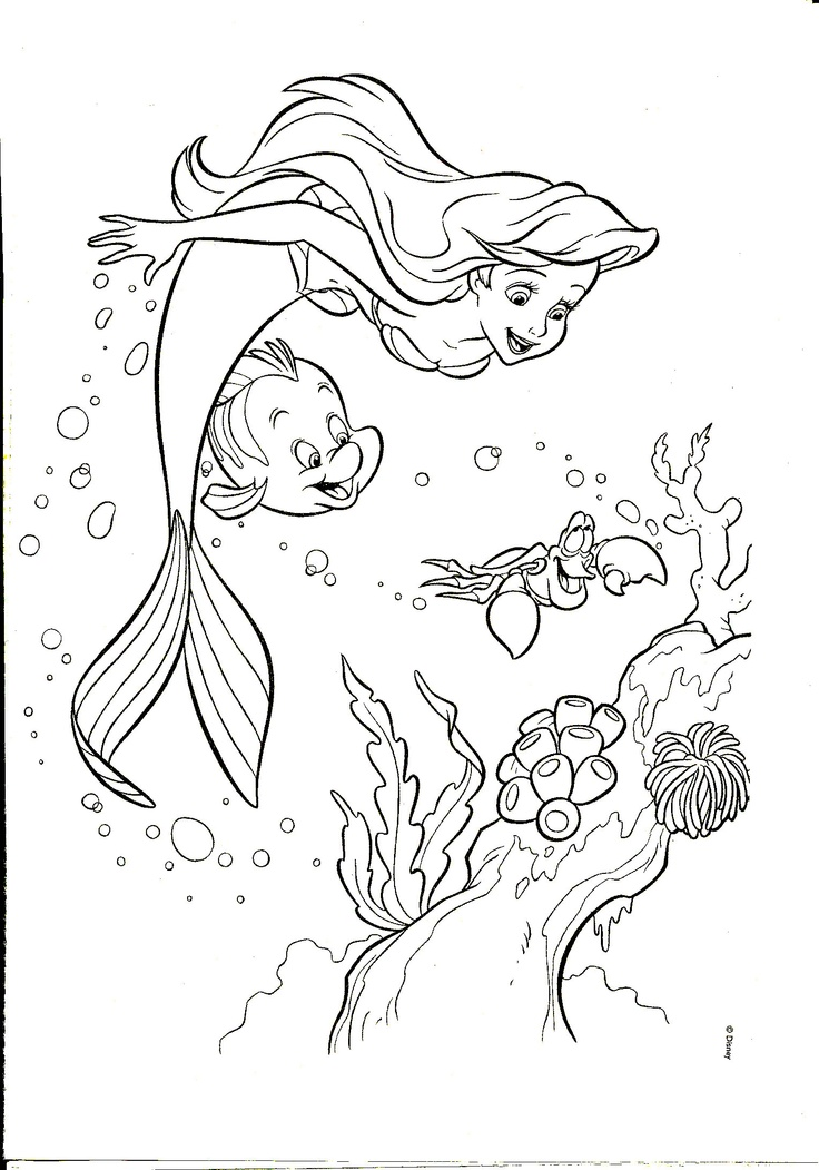 Ariel Little Mermaid And Friends Looking Coral Reefs Coloring Page