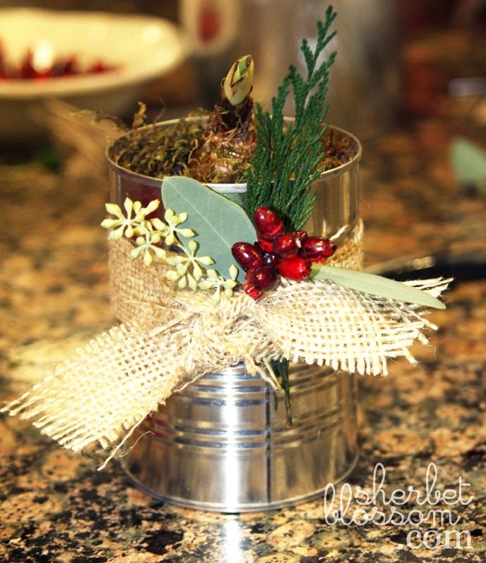 flower bulb christmas gifts | A Merry Christmas ...